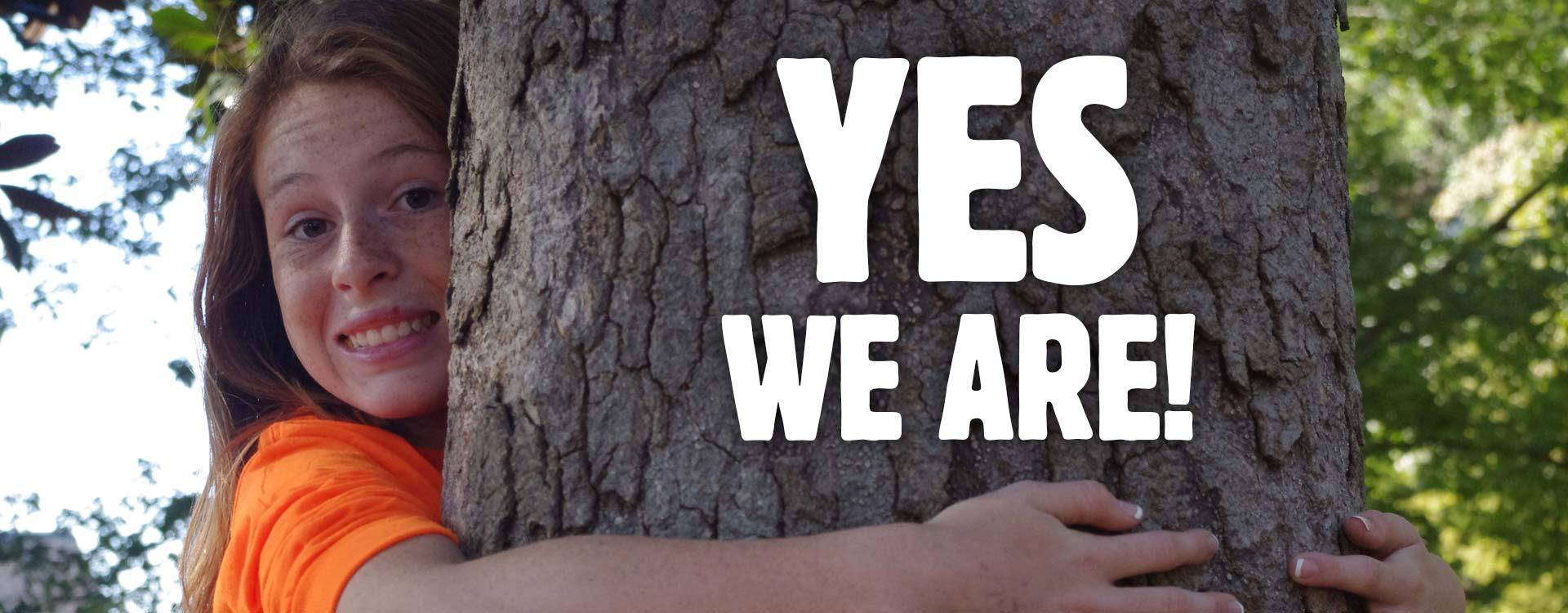 Kansas City Tree Caring
