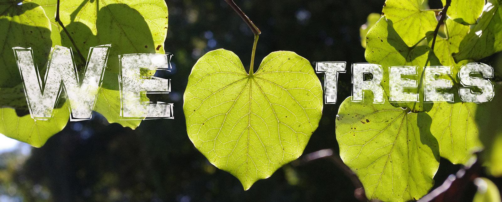 We heart trees